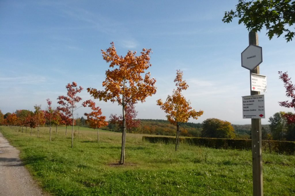 Photo balisage automne