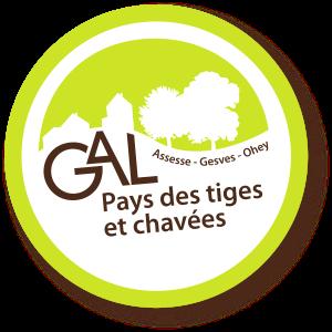 Logo GAL Pays des Tiges et Chavées